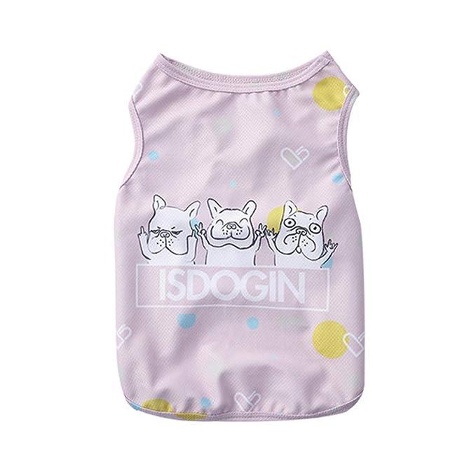Ropa para Mascotas,Dragon868 Verano cómodo Mascota Perro enfriamiento Chaleco Camisas Mascotas Perro Ropa: Amazon.es: Ropa y accesorios