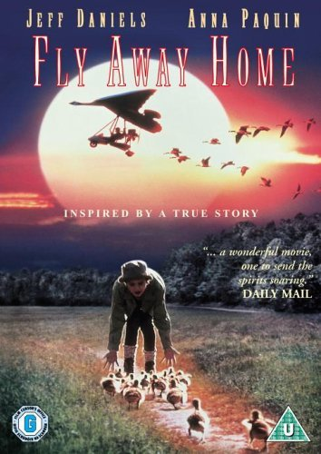 Fly Away Home [Reino Unido] [DVD]: Amazon.es: Jeff Daniels ...