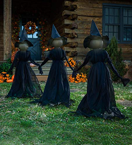 Lighted Halloween Witch Stakes, Set of 3-6.3 L x 51.2 W x 47.2 H for $<!--$99.95-->