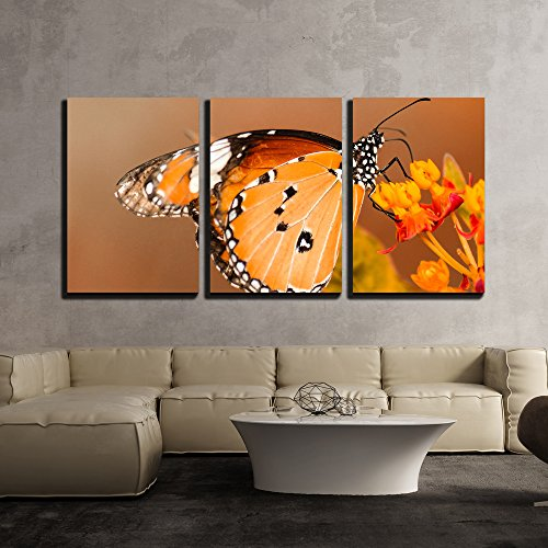 a Butterfly Stay on the Flower x3 Panels
