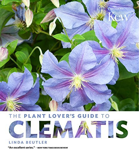 The Plant Lover's Guide to Clematis by Linda Beutler (2016-03-23)
