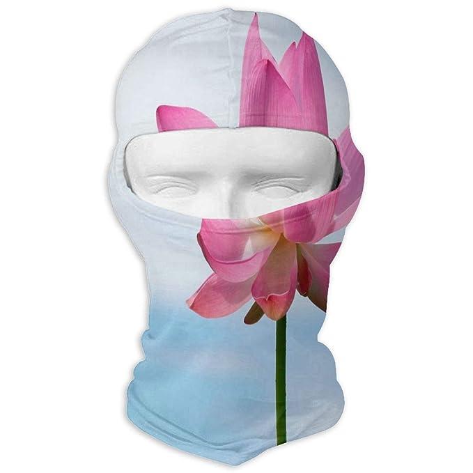 Amazoncom Balaclava Mountain And Lotus Flower Full Face Masks Ski