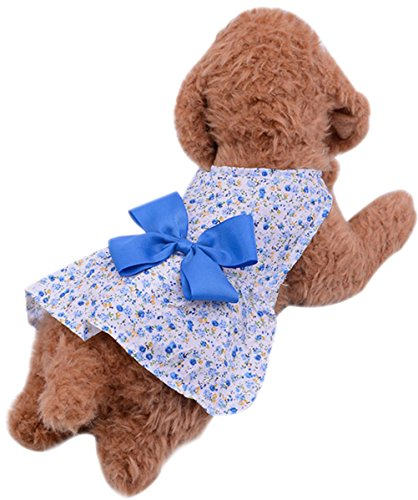 Tail Squirrel Homemade Costume (Freerun Stylish Cute Summer Soft Floral Bowknot Girl Dog Small Pet Cat Skirt Dress Costumes - Blue,)