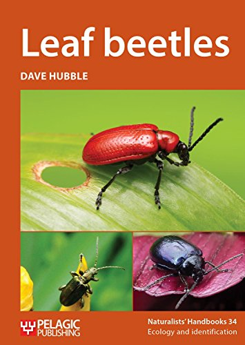 Leaf beetles (Naturalists