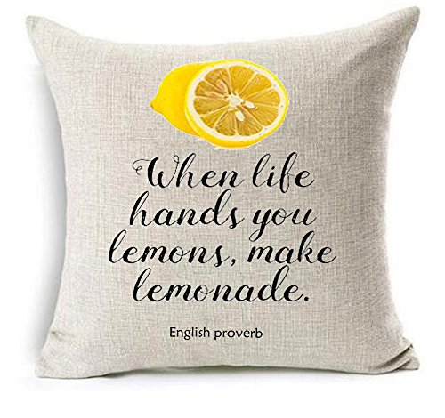 Life proverb When Life Hands You Lemons Make Lemonade Cotton Linen Throw pillow cover Cushion Case Holiday Decorative 18X18 inch (4)