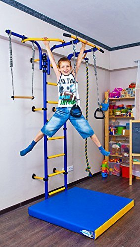 Amazon.com: Kids Indoor Sport Playground /Wall Mounted Gym ...