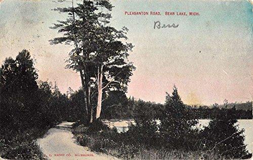 Bear Lake Michigan Pleasanton Road Scenic View Antique Postcard - Stores Pleasanton