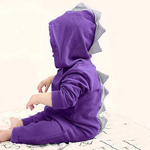 Coohole Cute Infant Toddler Baby Girls Boys Cartoon Dinosaur Romper Long Sleeve Hoodie Jumpsuit (3M, Purple)
