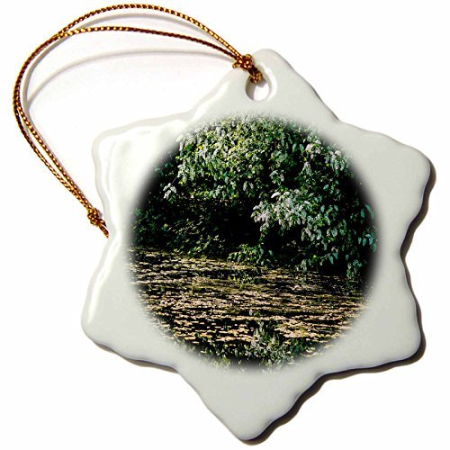 (Christmas Ornament Alexis Photography - Spring - Old pond and bird cherry tree in bloom - Snowflake Porcelain Ornament)