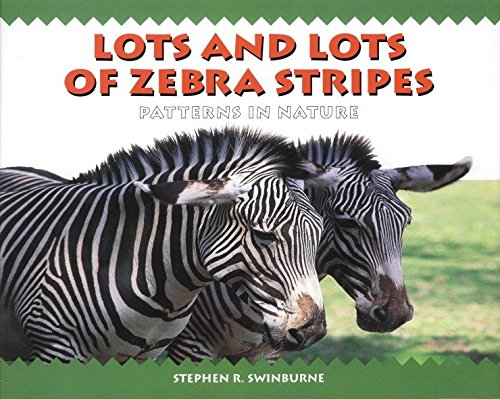 (Lots and Lots of Zebra Stripes )