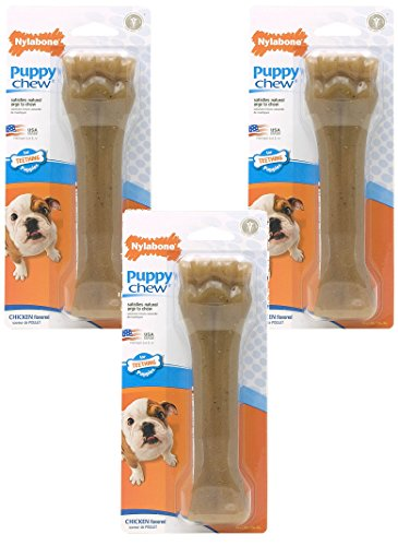 (3 Pack) Nylabone Just for Puppies Chicken Flavored Bone Teething Chew Toy - Size Souper/XL