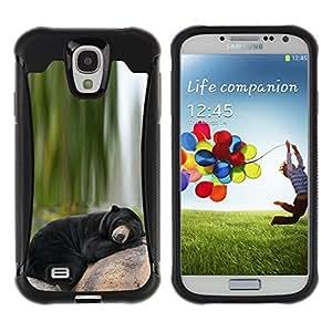 iKiki Tech / Estuche rígido - Bear Sleepy Alaska Black Nature Green - Samsung Galaxy S4 I9500