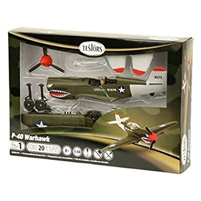 Testors P-40 Warhawk Aircraft Model Kit (1:48 Scale) [parallel import goods]