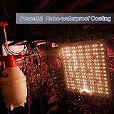 Carambola 1000W LED Grow Light 2x2 ft Sunlike
