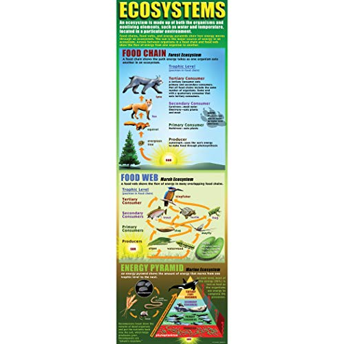 McDonald Publishing MC-V1701 Ecosystems Colossal Poster, Grade: 4 to 9, Paper