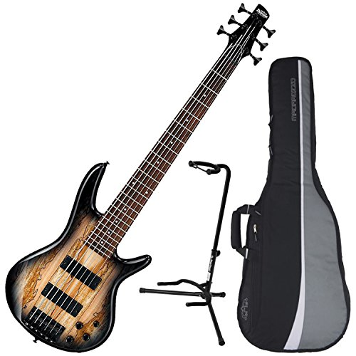 Ibanez GSR206SM 6-String Electric Bass (Natural Grey Burst) w/ Spalted Maple Top w/ Gig Bag and Stand by Ibanez