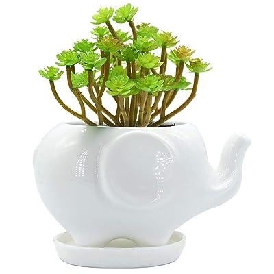 GeLive Elephant White Ceramic Succulent Planter Flower Plant Pot Window Box with Saucer Animal Decor (Mom Elephant) : Garden & Outdoor