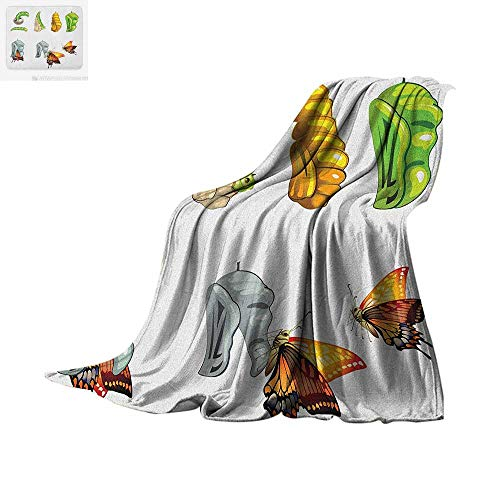 Butterfly Digital Printing Blanket Butterfly Stages with The Cocoon Life Cycle Nature Print Artistic Illustration Oversized Travel Throw Cover Blanket 90