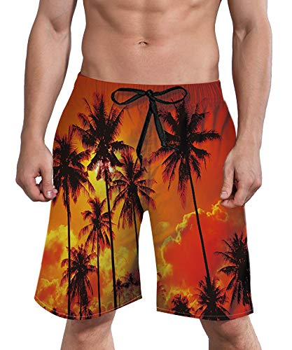 ALISISTER Male Swim Trunks Hawaiian Boardshorts Men 90S Novelty Beach Shorts Quick Dry with Elastic Drawstring Summer Holiday Bath Suit L