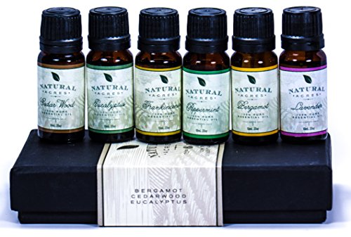 Essential-Oils-6-Pack-by-Natural-Acres-100-Pct-Pure-Therapeutic-Grade-Essential-Oil-10-Milliliter