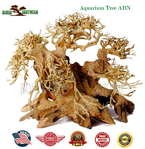 Bonsai Driftwood Aquarium Tree ABN (6 Inch Height) Natural, Handcrafted Fish Tank Decoration | Helps Balance Water pH Levels, Stabilizes Environments | Easy to Install ()