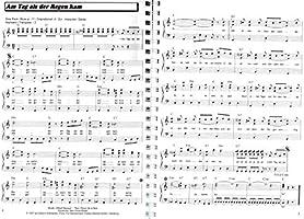 100 éxitos en C-Dur Band 2 – Hermosa Evergreens, Bate, Oldies ...