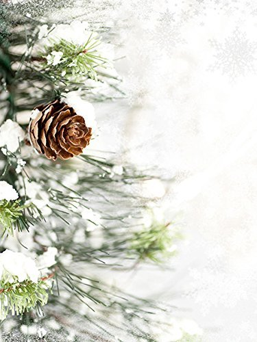 Pinecone Tube (Photo background Vinyl Backdrops for Photography Props 5'x6' Christmas Pinecone 4012 Durable, Wrinkle Free, Matte Vinyl Rolled in Tube - Made In USA)
