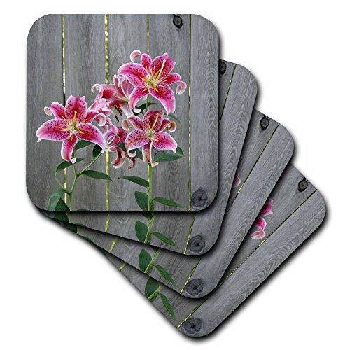 3D Rose Stargazer Lily by Rustic Fence Soft Coasters, Multicolor
