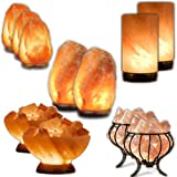 Wholesale Himalayan Salt Lamps - Premier Starter Kit (11 Lamps)