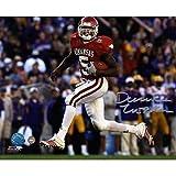 NCAA Darren McFadden Arkansas Autographed 8-by-10-Inch Photograph