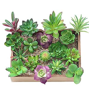 KUUQA 16 Pcs Mixed Artificial Succulent Flowers Plants Unpotted Decor Stems Faux Succulents Plants Bulk Assorted Picks for Home Decor Indoor Wall Garden DIY Decorations 90