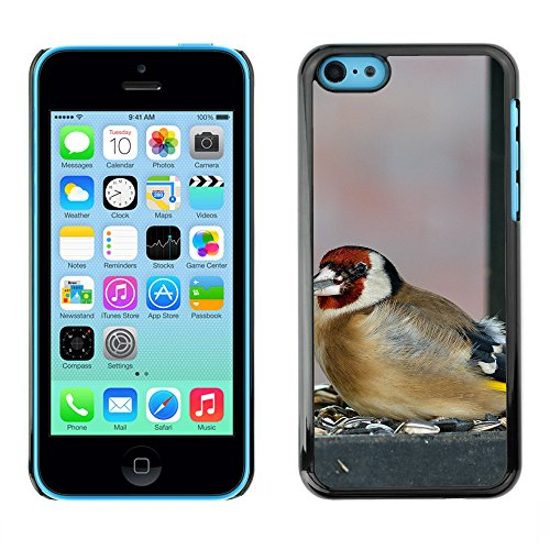 Premio Sottile Slim Cassa Custodia Case Cover Shell // F00015111 oiseau // Apple iPhone 5C