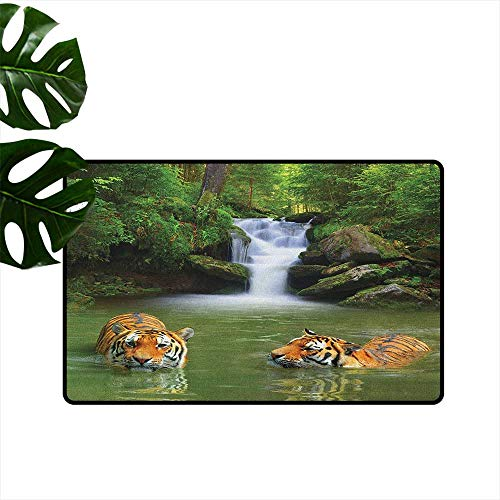 - Safari,Office Floor mats Siberian Tigers in Water Waterfall Pool Woodland Swimming Asian Natural 18