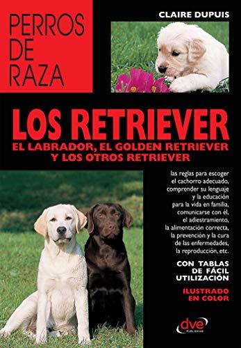 Los Retriever El Labrador El Golden Retriever Y Los Otros Retriever