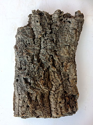 Virgin Cork Bark Flat - Large