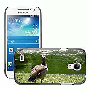Hot Style Cell Phone PC Hard Case Cover // M00116820 Goose Nile Goose Boy Colorful Bird // Samsung Galaxy S4 Mini i9190