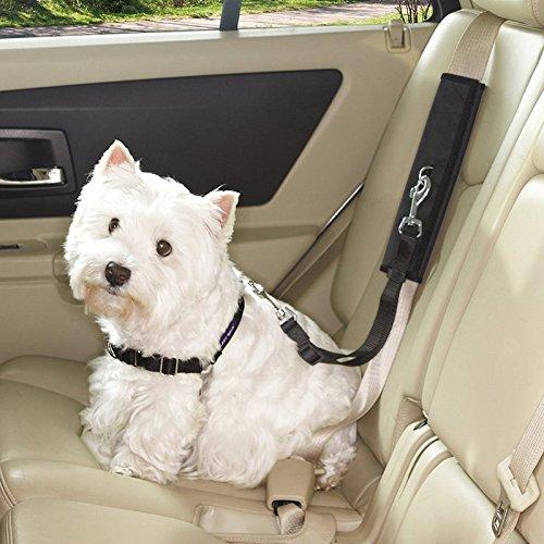 Guardian Gear Ride Right Seat Belt Connectors — Polyester Seat Belt Connectors for Dogs, Black