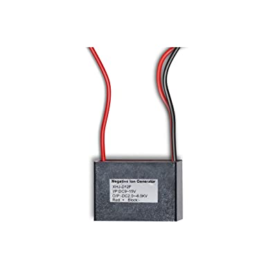 Electrodepot 12vDC - Negative Ion Generator for DIY Static Grass Applicator : Garden & Outdoor