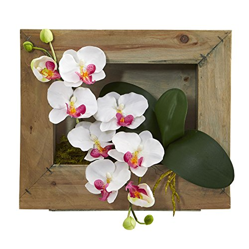 Nearly Natural Phalaenopsis Orchid Artificial Arrangement in Wooden Picture Frame (Picture Orchid Phalaenopsis)