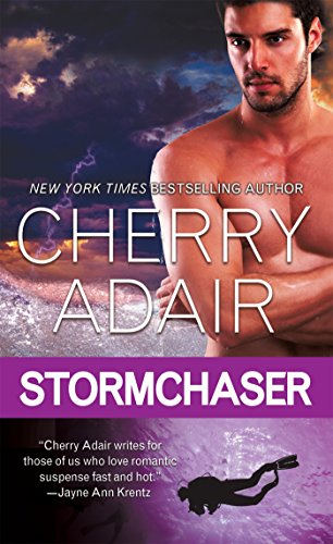 book cover of Stormchaser