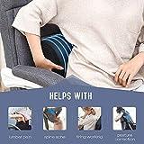 Tusscle Lumbar & Back Support Pillow, D Shape