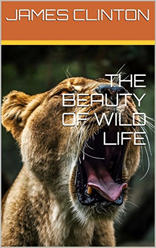 Download PDF THE BEAUTY OF WILD LIFE