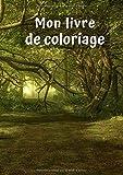 Mon livre de coloriage: Forêt No. 2 | 30 Pages |  Blanc |  Idée Cadeau