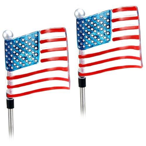 Solar Powered U.S. Flag Garden Stake Landscape Color Change Lights (Set of 2) ()