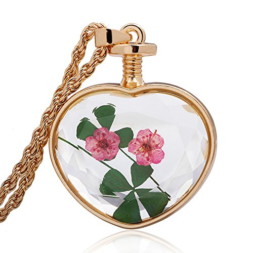 Winter's Secret Heart Shape Four Leaf Clover Pink Dried Flower Glass Pendant Gold Twist Chain Necklace (Pink Lucite Flower Bead)