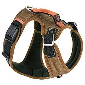 Gooby - Pioneer Dog Harness, Small Dog Head-in Harness with Control Handle and Seat Belt Restrain Captability, Sand, Small