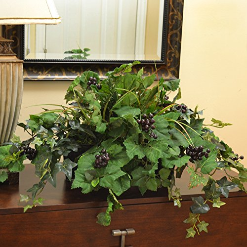 Grape Ivy Ledge Planter