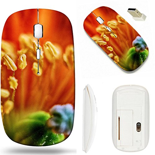 Poppy Border - MSD Wireless Mouse White Base Travel 2.4G Wireless Mice with USB Receiver, Noiseless and Silent Click with 1000 DPI for notebook, pc, laptop, computer, mac book design 20109047 Poppies Borders Farmhou