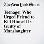 Teenager Who Urged Friend to Kill Himself Is Guilty of Manslaughter | Katharine Q. Seelye,Jess Bidgood