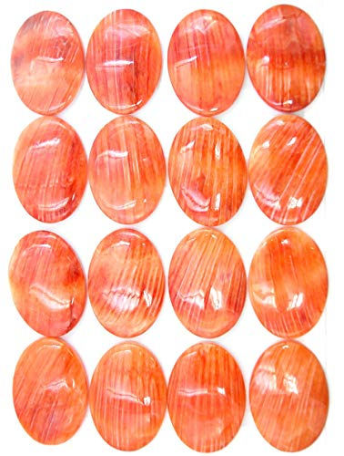 Orange Spiney Oyster Big 25x35mm Calibrated Oval Cabochon - Pendant Gemstone Oval 25x35mm